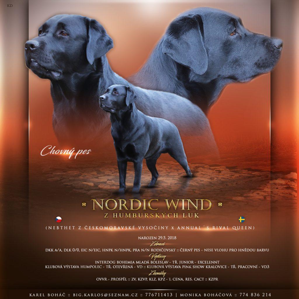 Nabídka krytí -Nordic Wind z Humburských luk